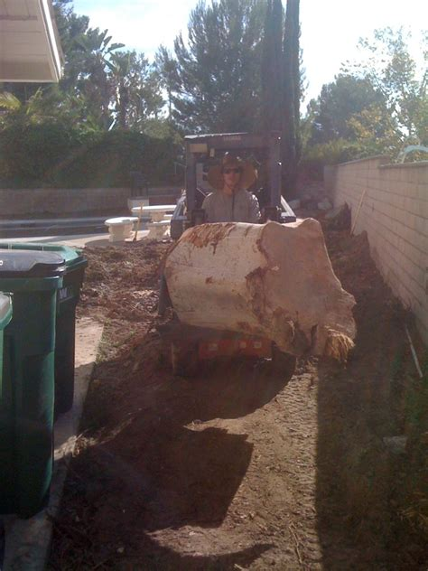 aaron s natural landscaping landscaping mission viejo