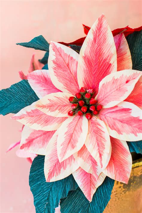 28 how to make paper poinsettia flowers search how to make paper poinsettia flowers search paper poinsettia flowers the house that lars built mightylinksfo