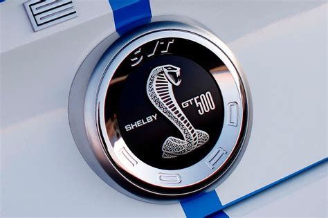 logo ford mustang shelby 2014