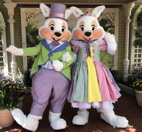 open  easter bunnys bunny lane garden  magic