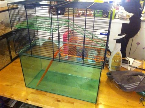 cage pour gerbille animaux cages 224 toulon reference ani cag cag annonce gratuite