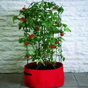 Patio Tomato Planter by Tomato Planter From Patio Growing Allotment Shop