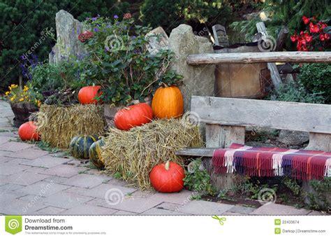 giardino ornamentale autunno sul terrazzo giardino ornamentale immagini