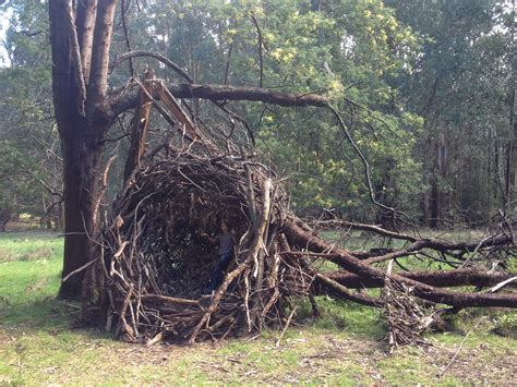 Do When You Build A Nest by Andy Goldsworthy Bone Machine