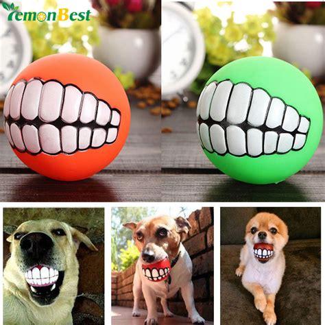 Cutest Cats Pet Pet Pet Product by Pet Product Pet Toys Puppy Cat