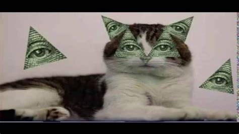 Dank Cat Memes - best dank meme mlg montage cats are illuminati youtube