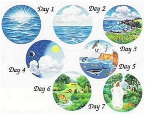 1000 images about bible creation on pinterest days of bible creation story for kids descartada creacionismo