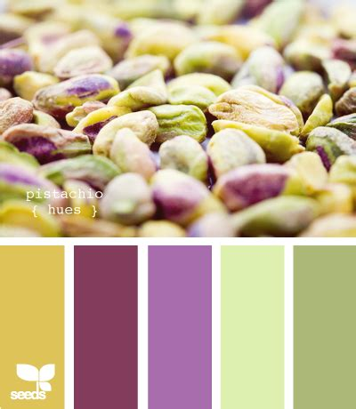 pistachio color color wander pistachios design seeds and color inspiration