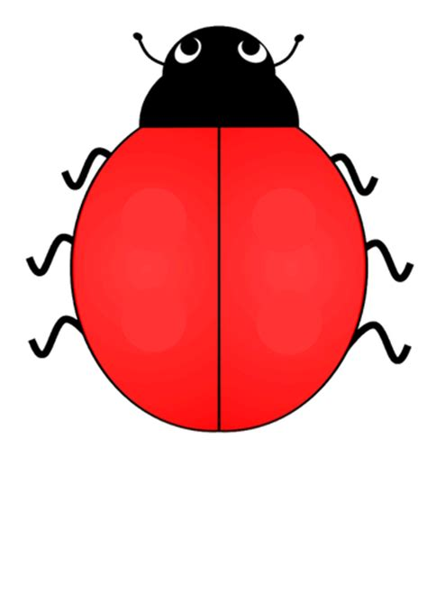 blank ladybug template ladybird number bonds by hippi7 teaching resources tes