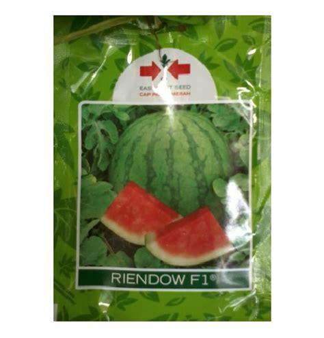 Benih Buah Semangka benih panah merah semangka riendow f1 400 biji jual
