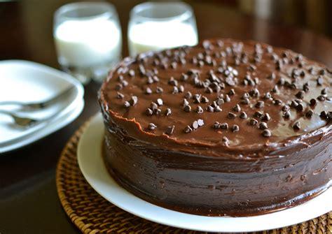 Chocolate Chip Mayo Cake   Pretty Yummy Foods