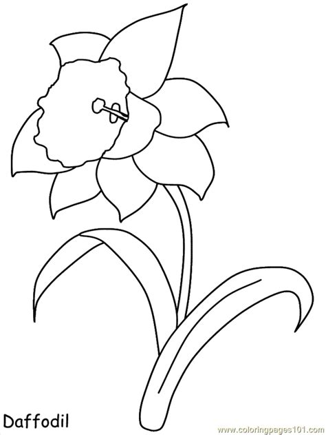 printable coloring pages of realistic flowers realistic flowers coloring page free realistic flowers