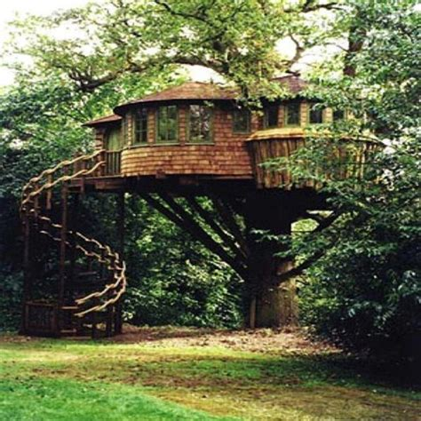 tree houses for adults 40 pics