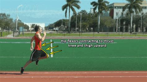 how to get better at sprinting improve running speed stride and turnover rate with hip