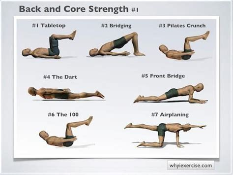 47 best strengthening lower back and images on workouts healthy living and