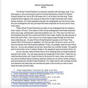 Essay About Elephant by Essay About Elephant