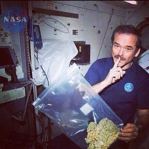 stay in bed for 70 days nasa will pay you 18000 usd to stay in bed and smoke weed for 70 straight days