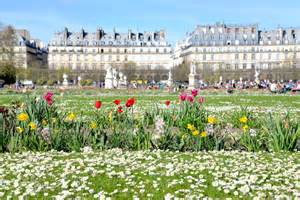today i discovered le jardin des tuileries