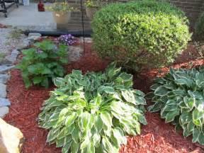 Backyard Landscapes On A Budget » Simple Home Design