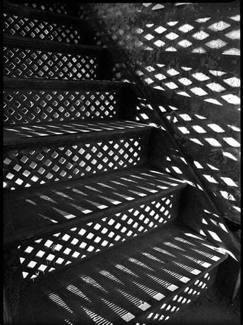 pattern of shadow and light friday favorites 72 living vintage