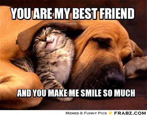 My Best Friend Meme - 30 hilarious best friend meme collection golfian com