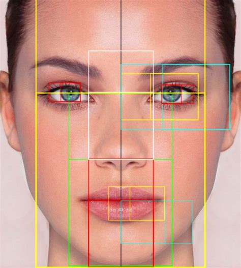 el gran misterio de la belleza siguiendo el metodo  proporcion aurea nutridermovital
