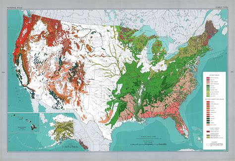 forest map of usa major forest types in the u s maps united states