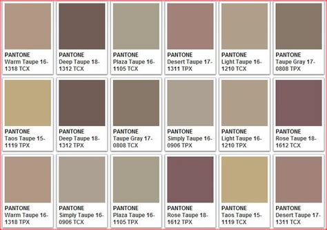 variations of taupe color theory and paint color ideas taupe and lights