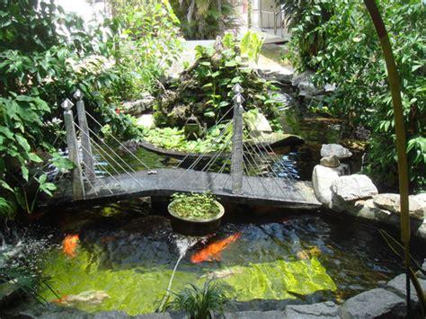 idea home landscaping diy garden pond designs