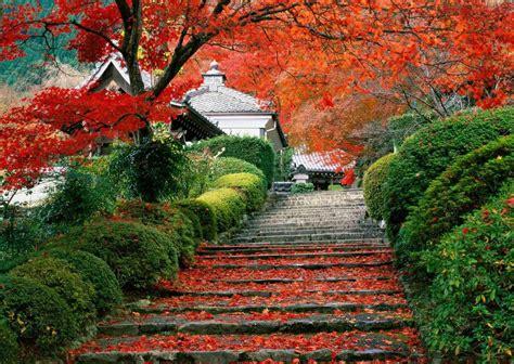 Wallpapers: Autumn , Fall, nature, nature wallpapers, popular, Fall Nature Wallpaper