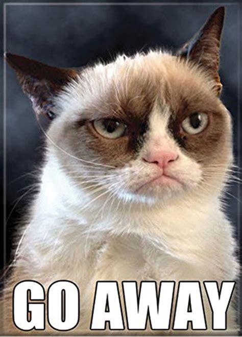 Go Away by Grumpy Cat Go Away Refrigerator Magnet Food Beverages