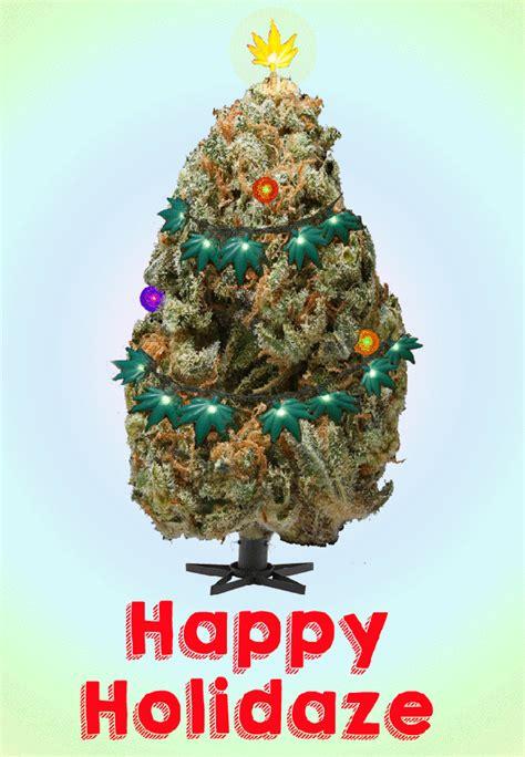 marijuana christmas tree pics bud n breakfasts provide accommodation worldwide where you can smoke metro news