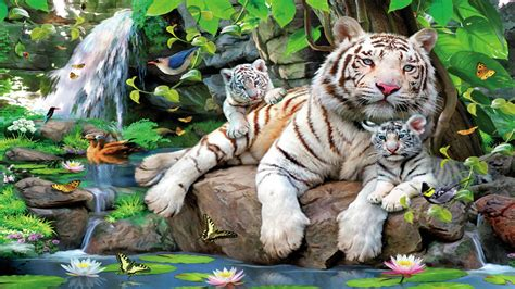 tiger print full hd wallpaper and background image white tiger with cubs hd hd desktop background wallpaper