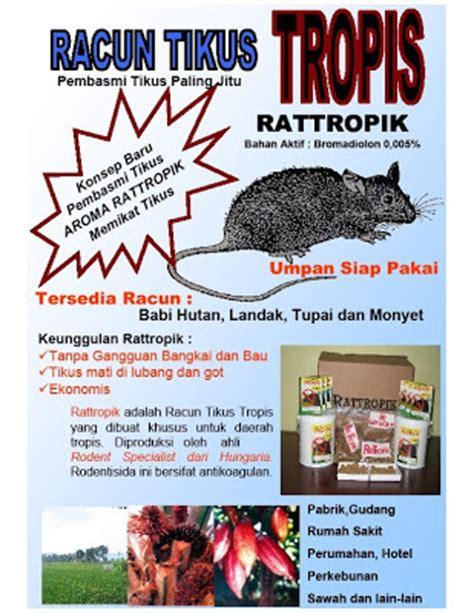 Jual Racun Tikus Di Makassar racun tikus