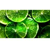45 HD Green Wallpapersackgrounds For Free Download