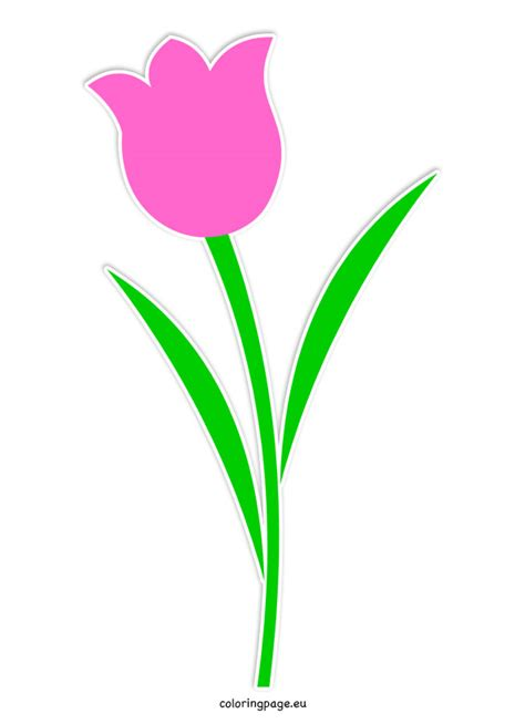 printable tulips flowers tulip template clipart best
