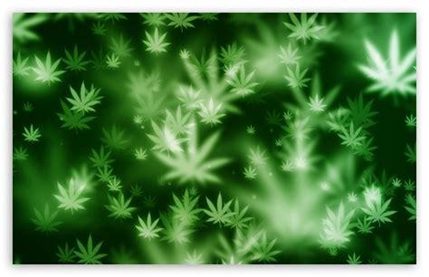 wallpaper 4k weed weed bokeh 4k hd desktop wallpaper for 4k ultra hd tv