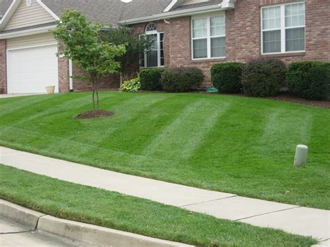 lawn care residential lawn care www pixshark com images