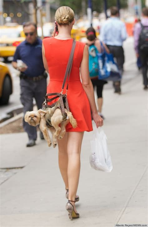 puppy purse purse seems like a polarizing choice of accessory photos huffpost