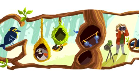 google images doodle phoebe snetsinger google doodle marks 85th birthday of