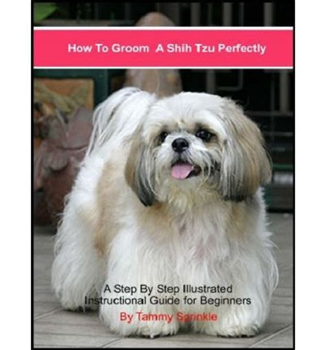 how to groom a shih tzu at home how to groom a shih tzu perfectly tammy sprinkle
