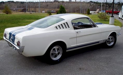 1965 mustang fastback white wimbledon white 1965 ford mustang shelby gt 350 fastback