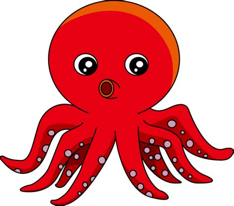 squid clipart cliparts co