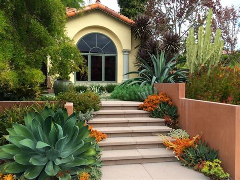 succulent front yard design valley succulent garden amelia b lima associates