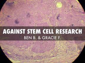 Embryonic Stem Cell Research Outline by Against Stem Cell Research By Gracie Feeney