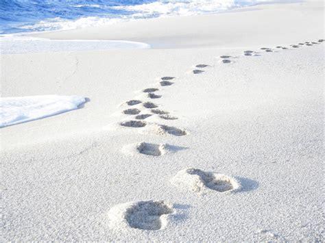 sand beaches white rice sand beach wallpapern