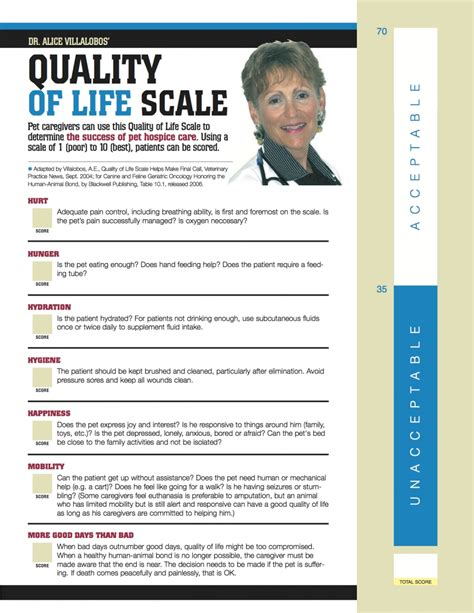 quality of scale quality of scale pdf veterinary practice news