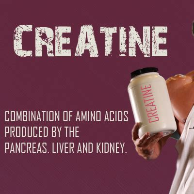 what is creatine steroid does dietkart what is creatine and what it does