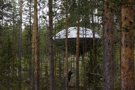 coolest treehouse in the world the world s 10 coolest treehouse hotels dailyscene