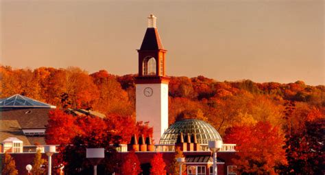 Quinnipiac Mba Program Ranking by Top 10 Undergraduate Accounting Programs In Connecticut